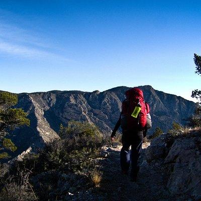 hiking the Guadalupe Peak trail