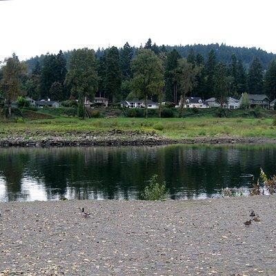 River, Clackamette City Park