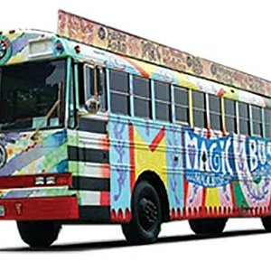 Our Colorful Magic Bus