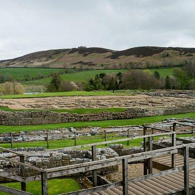 Excavations at Vindolanda