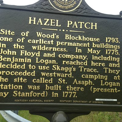Hazel Patch