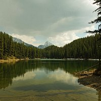 A view of Moose Lake
