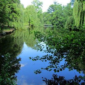 Der Pfühlsee im Pfühlpark
