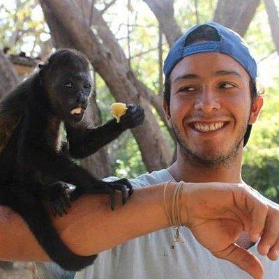 A volunteer at The Monkey Farm