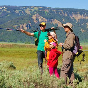 Watching wildlife in the Lamar Valley- Yellowstone National Park.