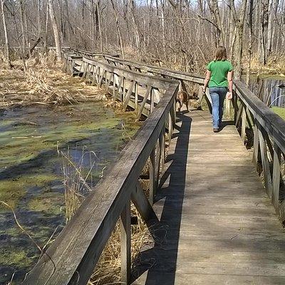 walking bridge to spicer lake
