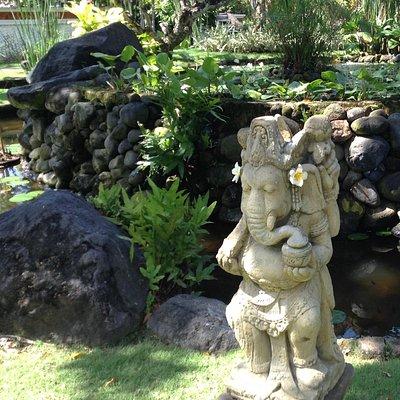 Visit the diverse Bali
