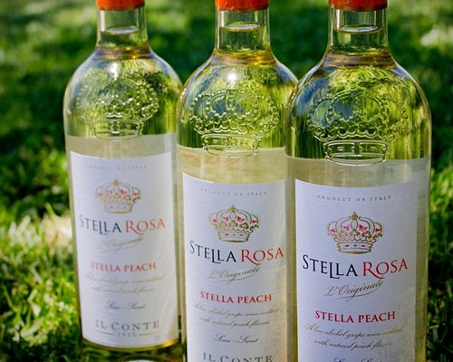 I highly suggest the Peach flavored Wine - fantastic !