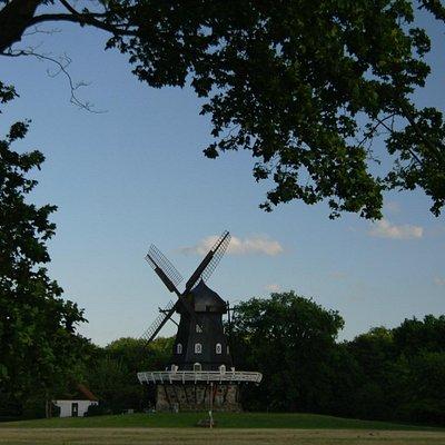 мельница в парке