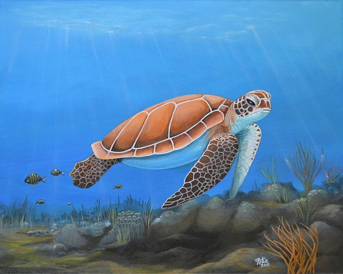 Sea Turtle, Acrylic Painting. Prints available