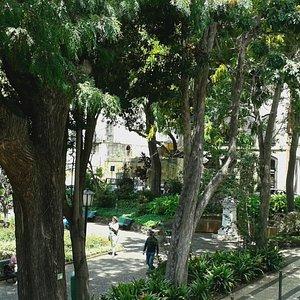 Garden & amphitheatre