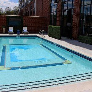 Pool with custom DaVinci painting