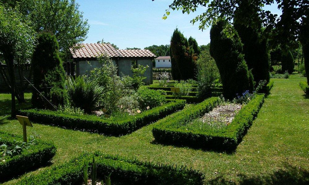 Herb and Medicinal Garden