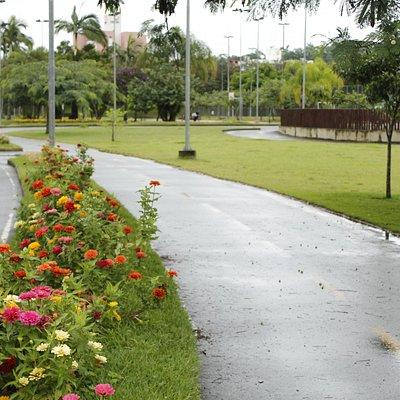 Local para caminhadas e ciclovia