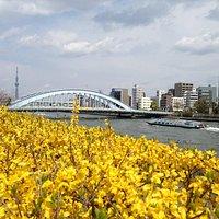 uente Eitai en una zona bonita de puentes en el Sumida y canales