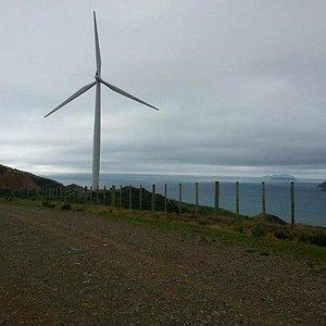 west-wind-recreation.jpg?w=300&h=300&s=1