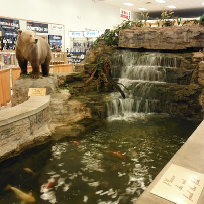 Some of the sites in the Store.