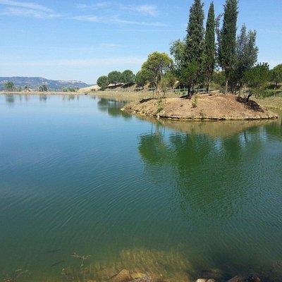Il nostro lago e le nostre carpe!!!!!!