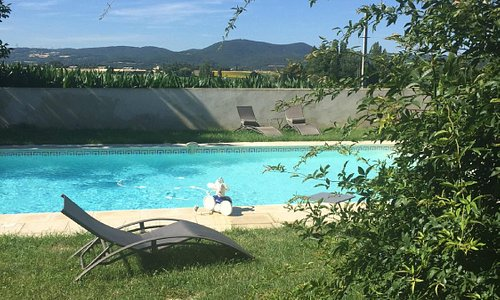 The pool with corn fields and mountains beyond