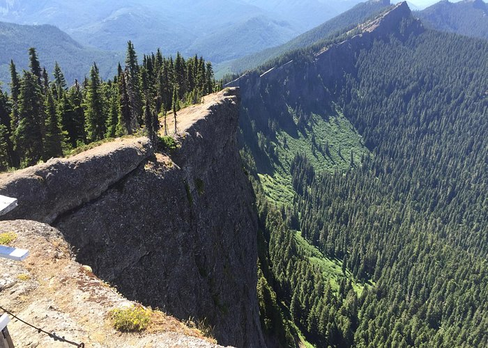 Our visit to high rock lookout end of June 2015. Steep trail to get there but worth it for these