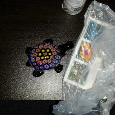 Bought this sovinuer turtle