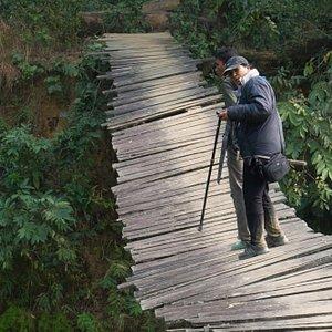 a women walking through the dangerous bridge in the national park