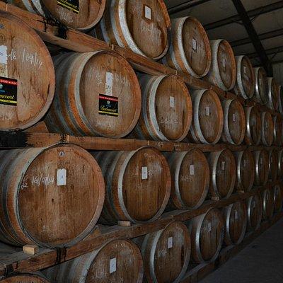 Fine Oak Barrels Containing Rum