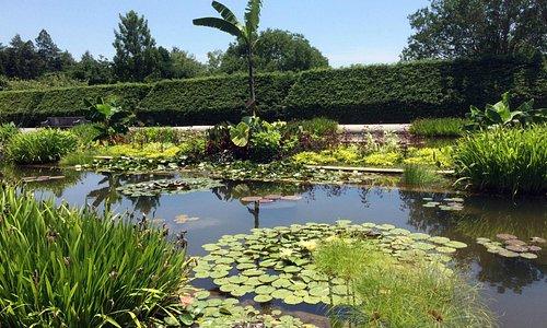 Biltmore - Italian Gardens