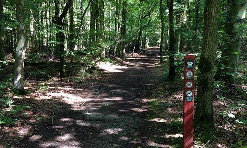 Indgang til Husby Klitplantage