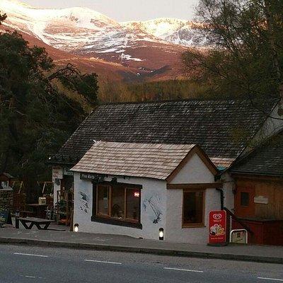 Pine Marten Bar Glenmore