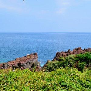 海岸の風景