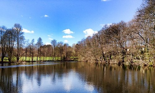 Beautiful lake with natural jogging trial nearby the hotel, within 5 minutes walk located at the
