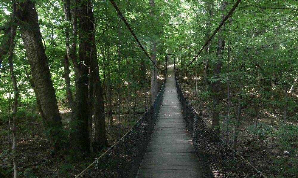 close up view of walking swinging bridge