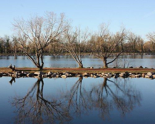 Strolling around Henderson Lake