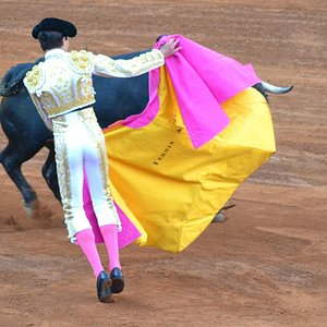 Classical bull fight move
