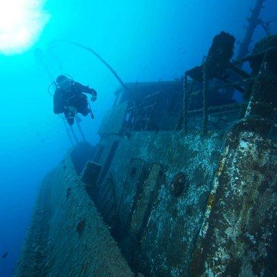 Fondos de Güímar, Ecological Divers Tenerife
