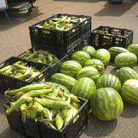 Bost Farms vegetables at Midtown Farmers' Market