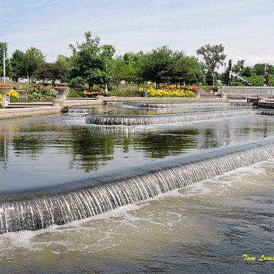 Beutter Park gardens