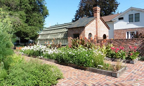 Luther Burbank's Greenhouse