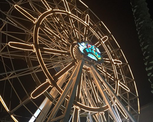The wheel lit up at night and our views from the top.