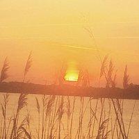 Bayville sunsets