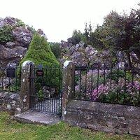 Alpine/Rock garden fans delight!