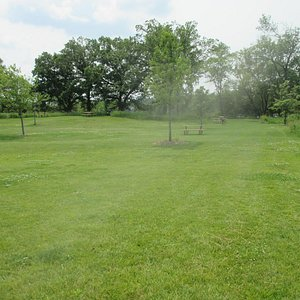 Super picnic area with room to play