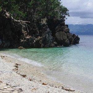 Cove - Alad Island