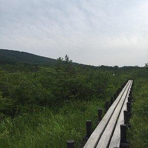世界谷地原生花園自然歩道