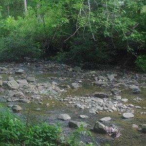River near Falls
