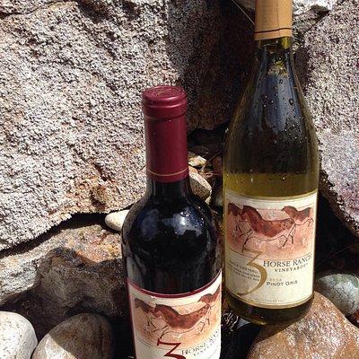 3 Horse Ranch Vineyards