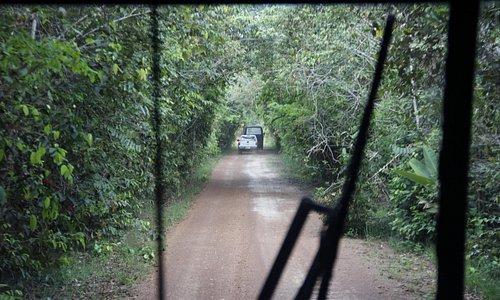 Estrada de acesso ao Parque