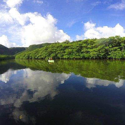 NHKの景色がそのまんまあります西表島☆