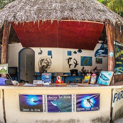 Bluedream Dive Shop